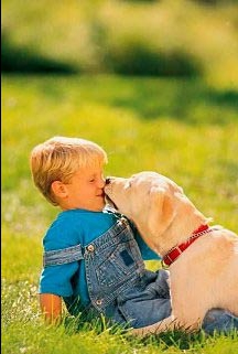 Кому нужны собаки?