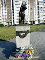 В Тольятти благоустроили территорию вокруг памятника псу Верному
