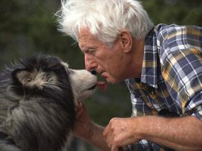 Специалисты советуют пенсионерам заводить домашних животных (Екатеринбург)