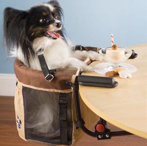Рейтинг странных устройств для собак