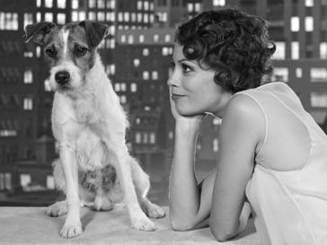 В Голливуде пройдет кинопремия для собак