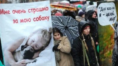 500 человек на митинге против живодёрства (Москва)