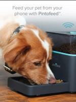 Мобильный телефон покормит домашнего питомца