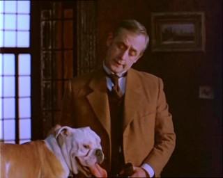 День рождения Шерлока Холмса будут отмечать парадом собак (Латвия)