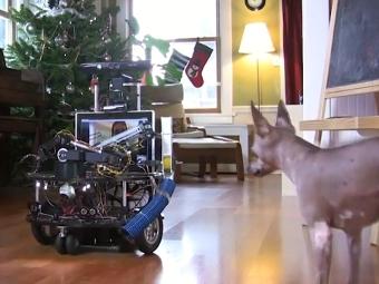 Дарвинбот - современная игрушка для собаки