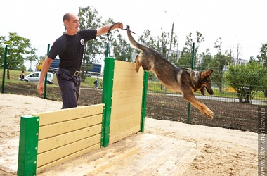 В Харькове появилась современная площадка для собак (Украина)