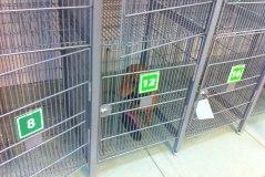 В подмосковном Серпухове появились камеры хранения для собак