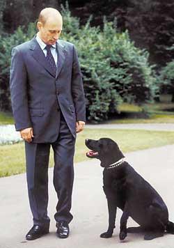 Борис под воздействием Путина купил жене собаку
