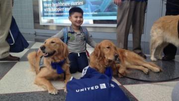 Собаки встречают пассажиров самолетов в аэропортах США