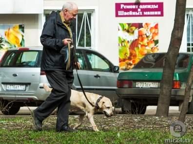Любители собак ощущают себя моложе на 10 лет