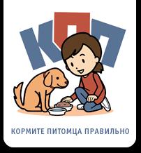 О рейтингах кормов для собак
